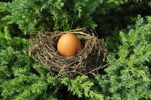 egg-1600890_1280