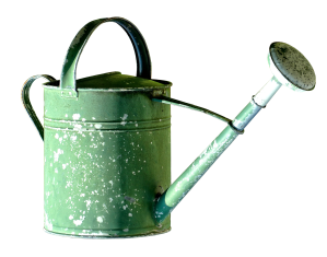 watering-can-2610032_1920
