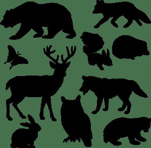 animal-1297864_1280