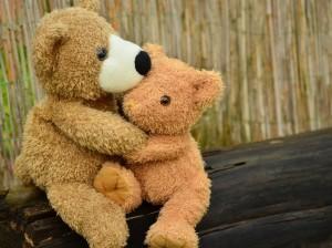 teddy-1113160_1920 (3)
